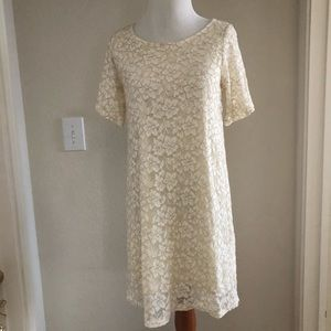 Index Cream Lace shift Dress
